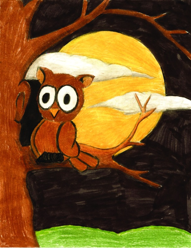 Owl drawing by: Taylor L., Age 9, Boulder, Colorado