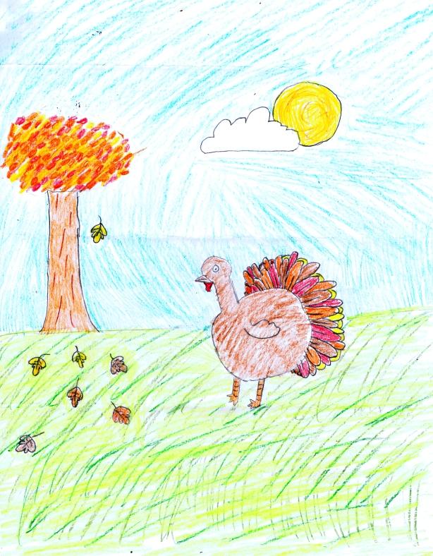 Turkey drawing by: Zoe E., Age 9, Boulder, Colorado
